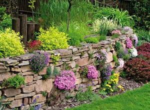 подпорные стенки в саду фото_podpornye_stenki_v_sadu_foto