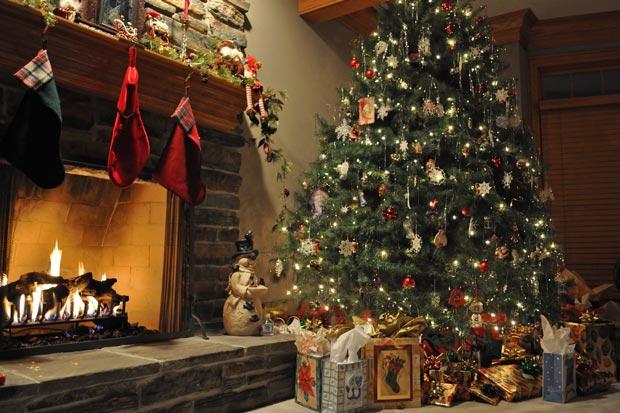 Как сохранить новогоднюю елку как можно дольше новые фото