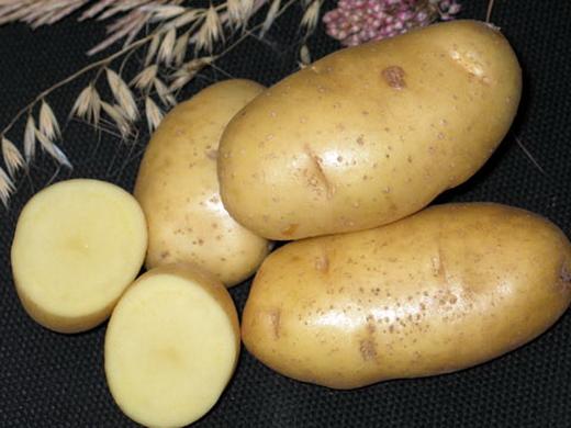 картофель из истинных семян - kartofel iz istinnykh semyan