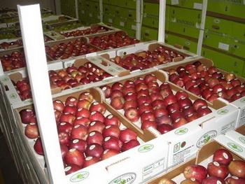 как сохранить фрукты на зиму - kak sokhranit frukty na zimu