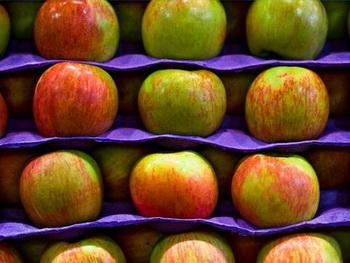 как сохранить фрукты свежими - kak sokhranit frukty svezhimi