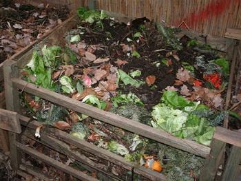 компосты почвы удобрения _ komposty_pochvy_udobreniya