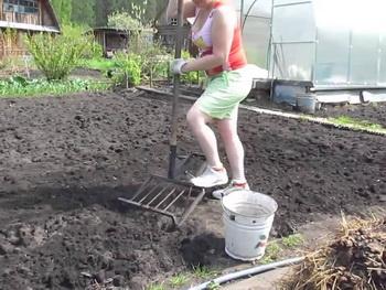 подготовка почвы к посадке - podgotovka_pochvy_k_posadke