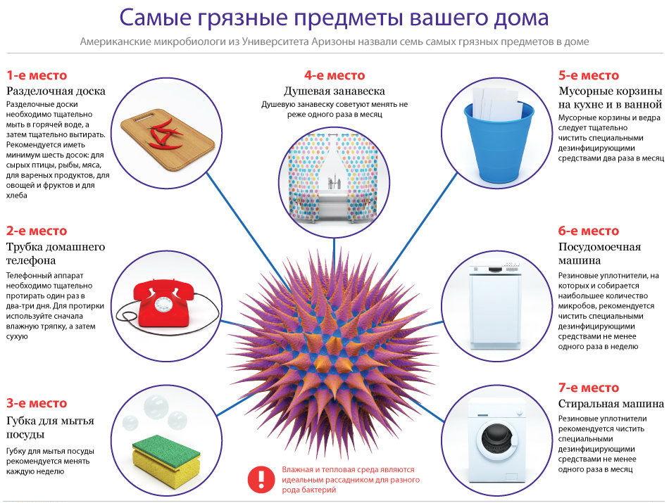 самые грязные предметы вашего дома - samye_gryaznye_predmety_vashego_doma