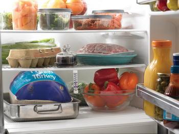 холодильник приют для микроорганизмов - holodilnik_priyut_dlya_mikroorganizmov
